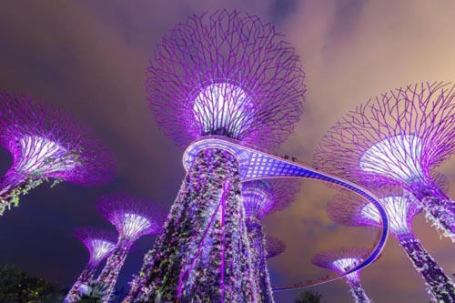 10 hoat dong mien phi ve dem o singapore 1.8